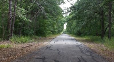 2 adjoining residential lots near Cedar Creek Lake * Trinidad - Seven Points Texas