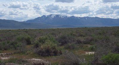 Unique Opportunity to own 41 acres   in the Historic Railroad townsite of Flanigan Nevada