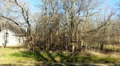 Bastrop Texas 1/4 acre building lot.  Mobile homes NOT allowed