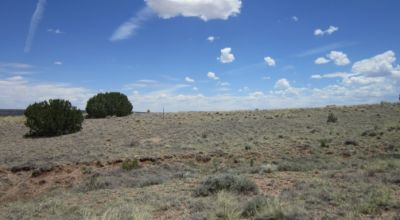 Charming 1.01-Acre Lot in Apache County, Arizona, 17 Minutes Away from St. Johns!