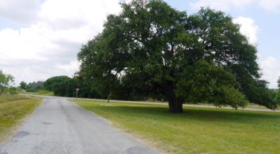 5  tree covered parcels. some oaks . Lake Brownwood area . 15 minutes to town