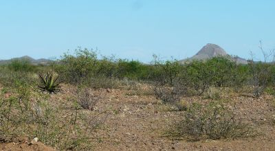 Buildable parcel Near Douglas Arizona Cochise County must sell!