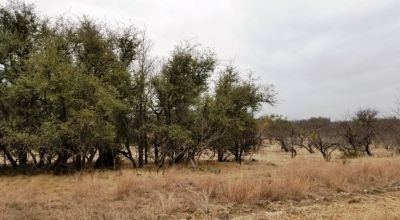 Texas Hill Country * Oak Point with access to Lake Brownwood * Gated Subdivision