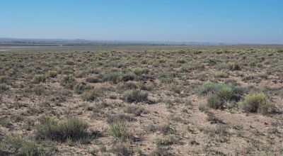 Price Reducedon this 1.25 acre Arizona property near Petrified Forest & Painted Desert