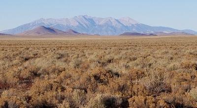 Designated RV & camping lot. Southern Colorado near Rio Grande River